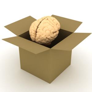 Odliv mozgova 2